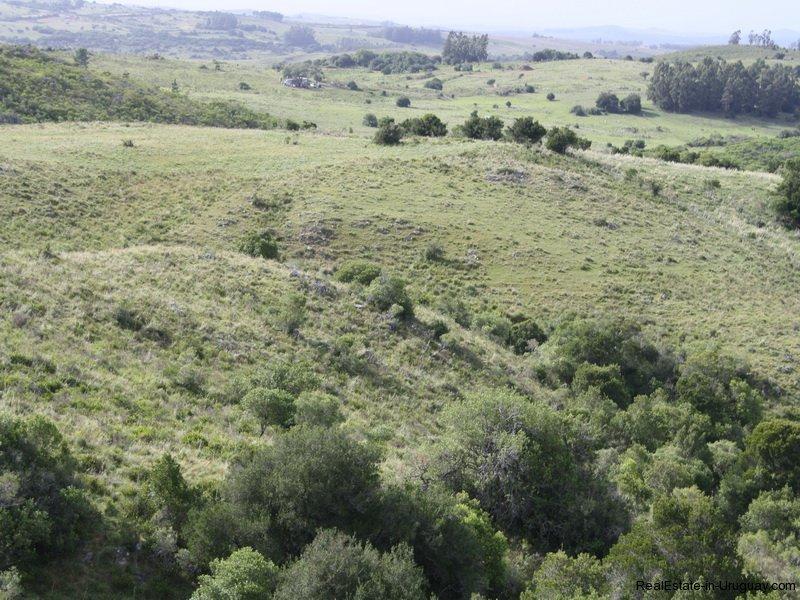 5538-Little-Posada-on-100-Hectare-Land-in-Minas-4403
