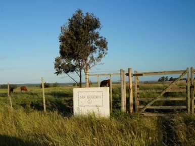 Gate-to-Historical-Estancia-near-Casupa
