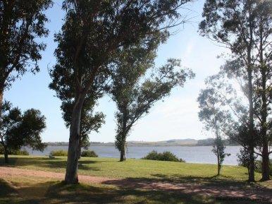 4099-Views-from-Lake-Side-Cabin-at-Laguna-del-Sauce-Punta-del-Este