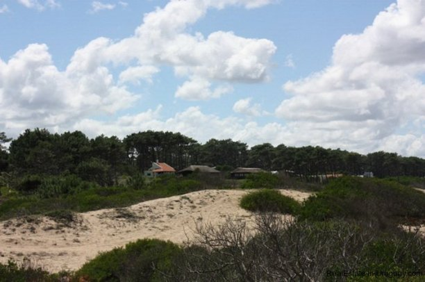 4607-Dunes-of-7-Ha-Ocean-Frontline-next-to-Punta-Ballena-Punta-del-Este