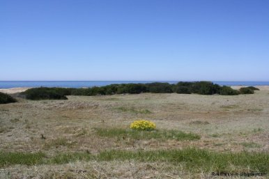 5718-Springflowers-of-Beachfront-Land-in-San-Vicente