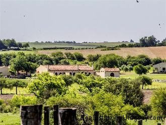 Carmelo-Uruguay-Winery-for-Sale