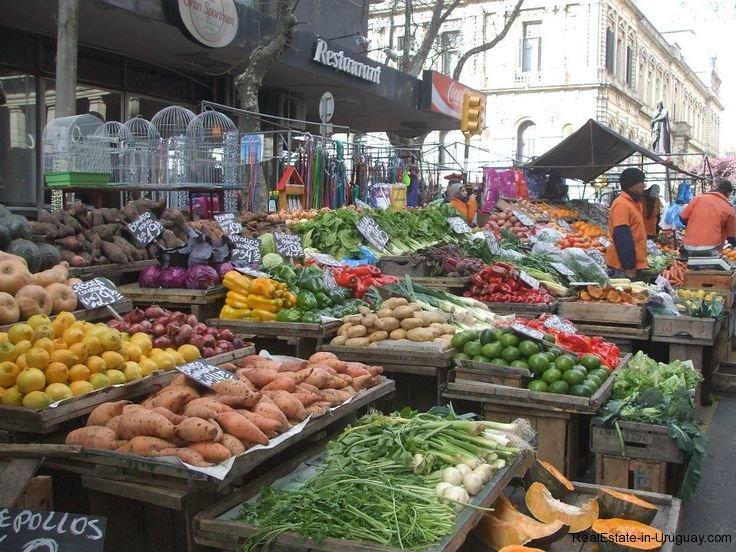 Fruits-in-Montevideo-Uruguay