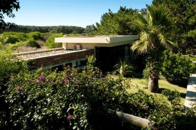 5144-Modern-Pool-House-Jose-Ignacio-Garden