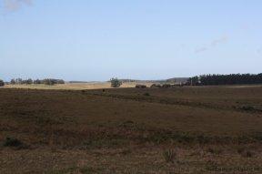 5650-Land-Garzon-Area7