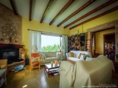 Beautiful Estancia with Vineyard - Living Room