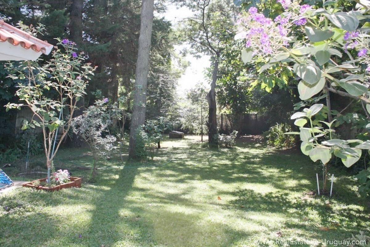 Bungalow on Mansa - Garden