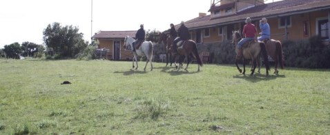 Real Estate in Uruguay - Rural and Wine Tourism in Uruguay