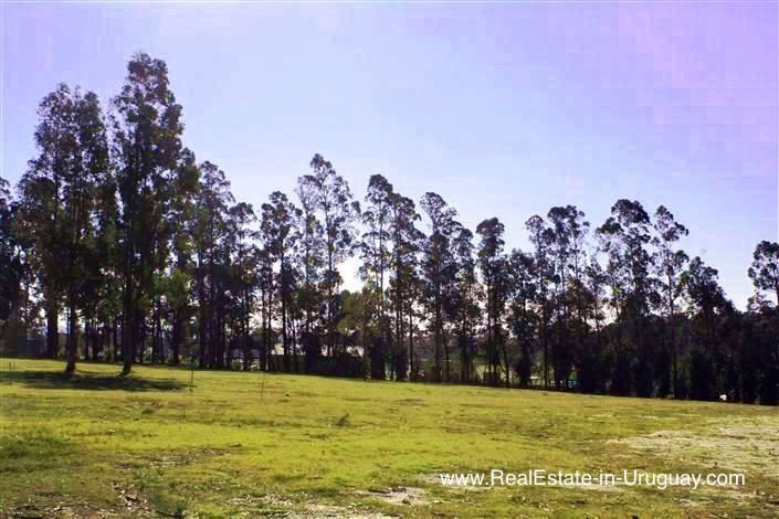 Land behind La Barra and near Golf Course