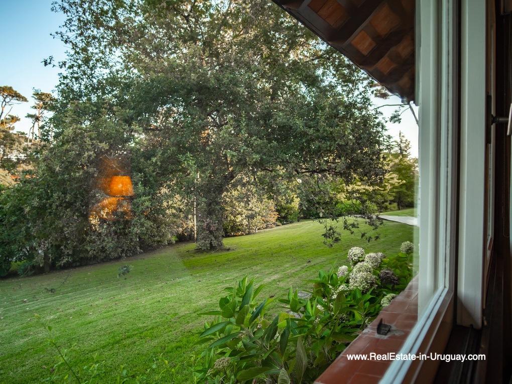 Garden view of Large Property in the El Golf Area in Punta del Este
