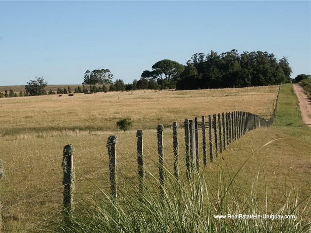 Fence of Large Estate near Jose Ignacio with 70 Hectares Land