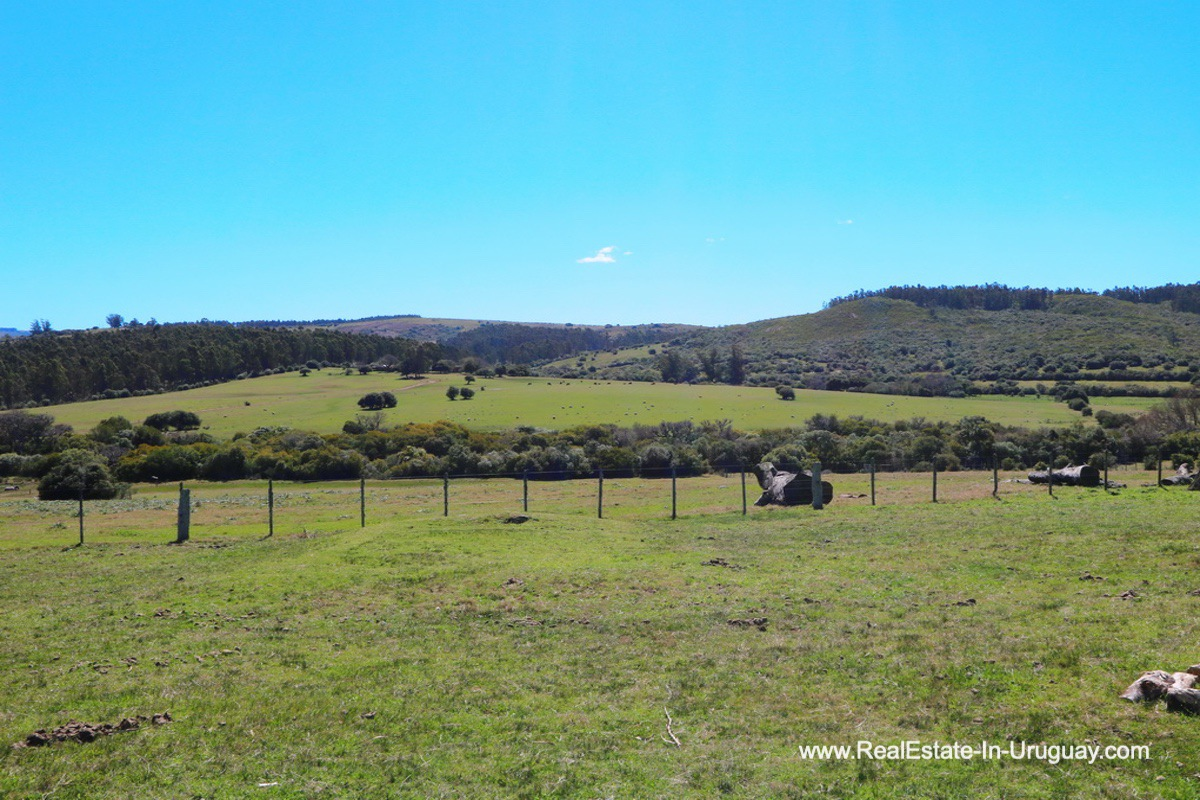 Views of 97 Hectares Farm near Pueblo Eden