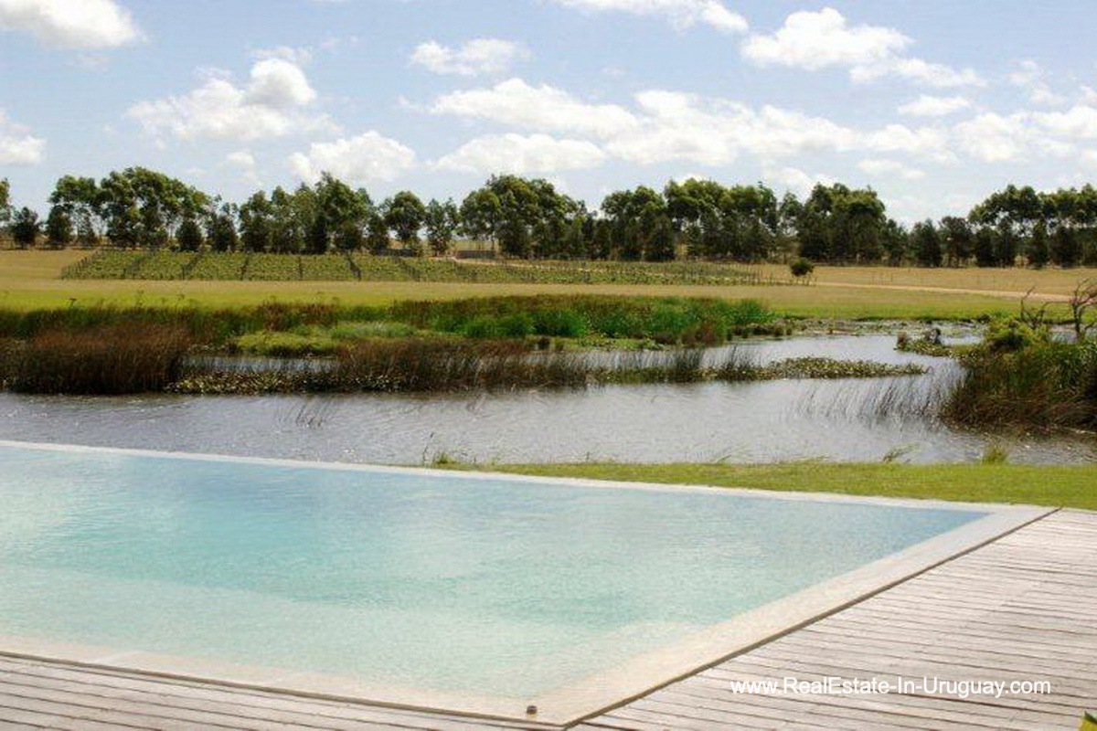 Pool and View of Wonderful Ranch with a Vineyard behind La Barra and Manantiales