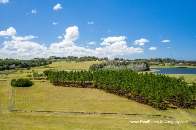 Exclusive Plot within Fasano near La Barra