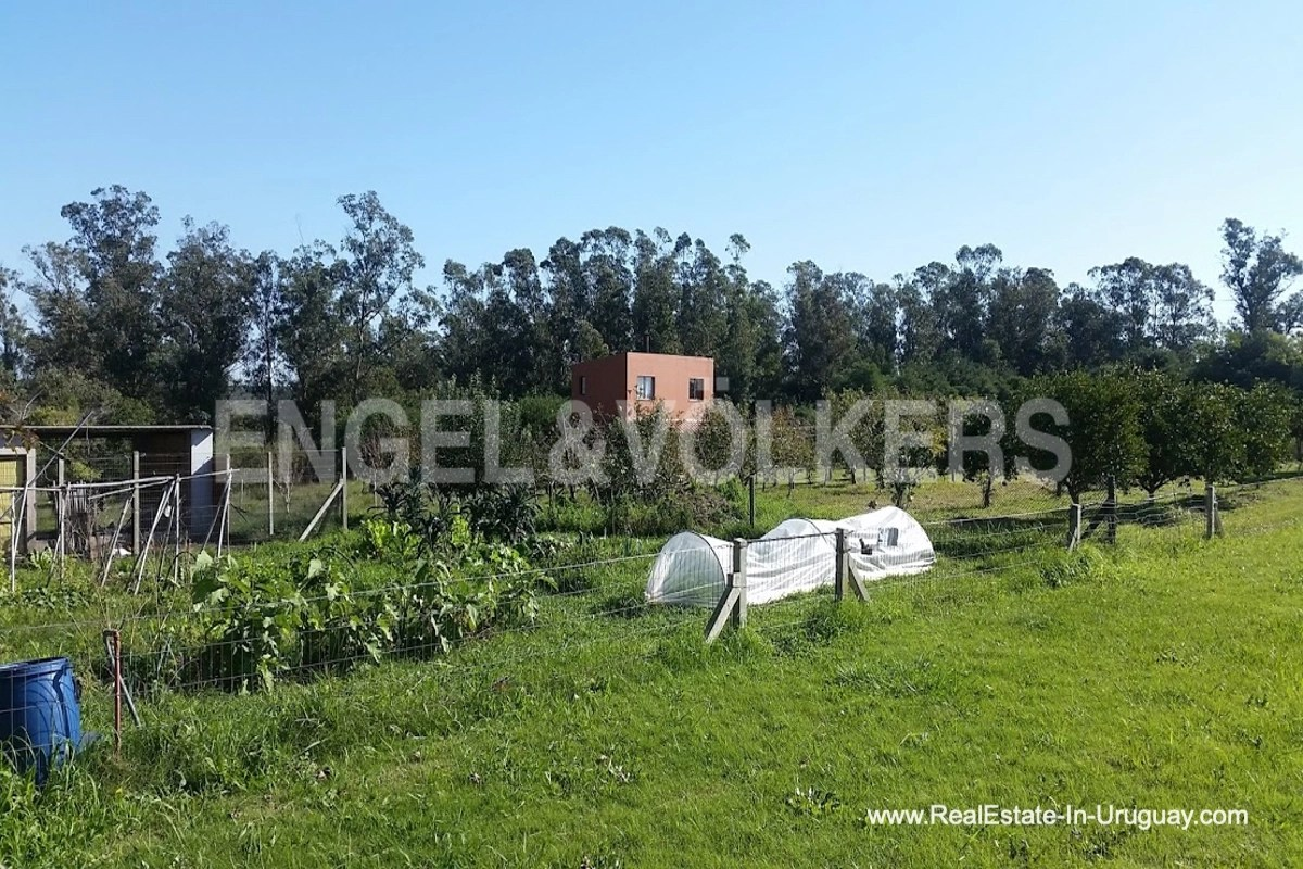 Farm with Organic Garden near Wineries in Canelones