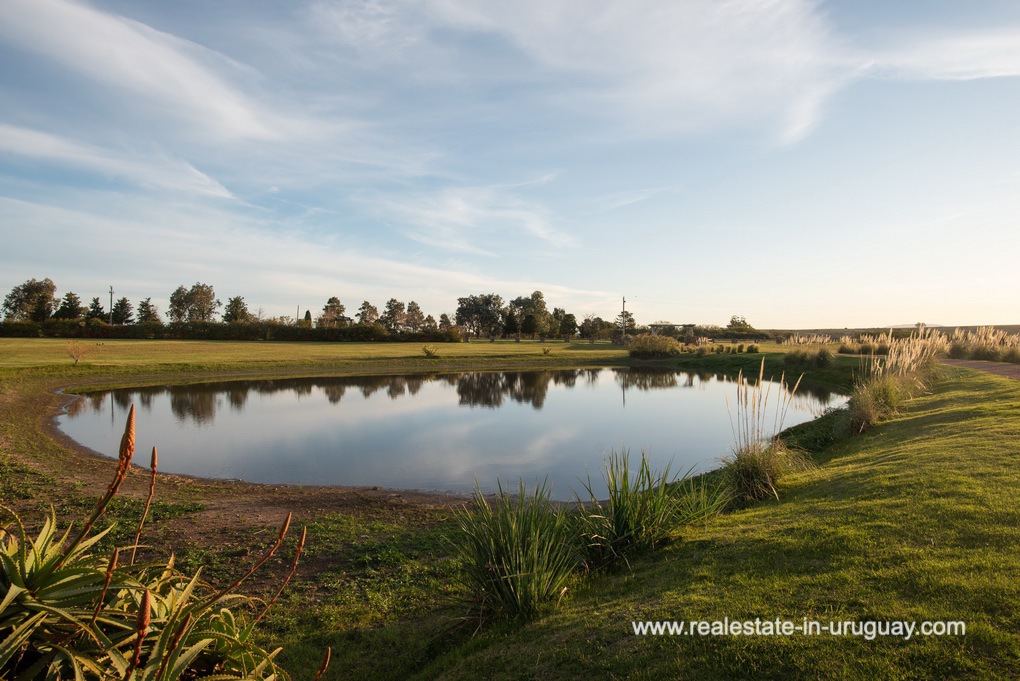 Ponds of Country Home near Laguna del Sauce by Punta del Este