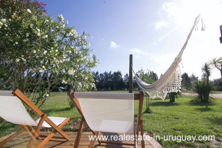 6497 Countryside Property between Jose Ignacio and Garzon - Garden3