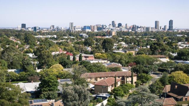 De stad Adelaide gezien vanuit de lommerrijke oostelijke buitenwijken
