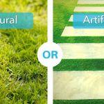 Natural Grass OR Aritficial Grass