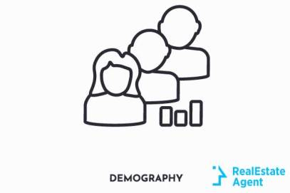 demography icon