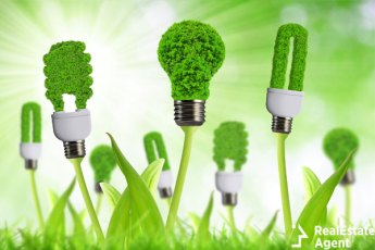 Eco-friendly green nature grass bulbs concept