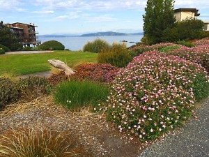West Seattle Park