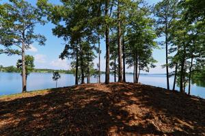 Lot 21 - The Ridge on Lake Martin