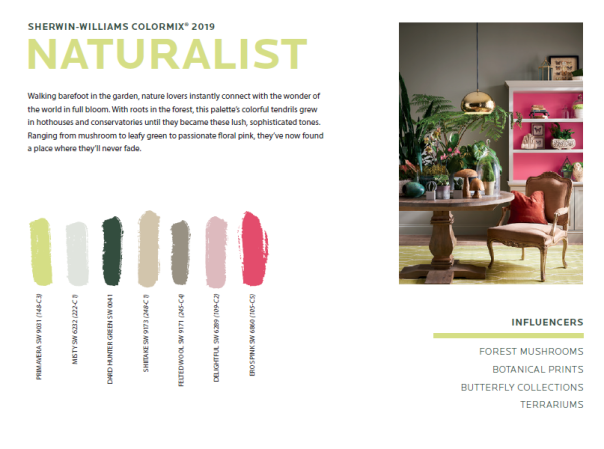 naturalist We've been talking about color...now vote for your favorite...