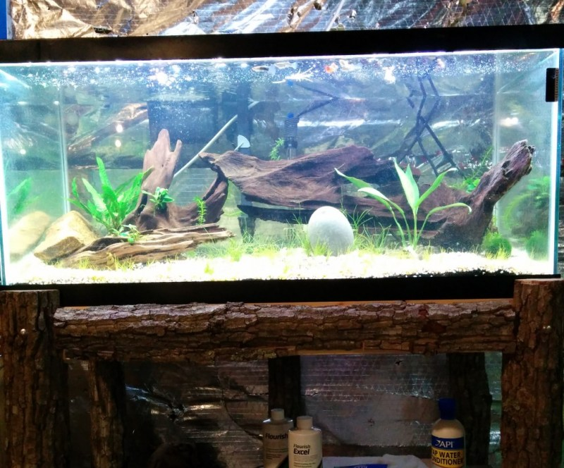 DIY Fish Tank Stand, Natural Wood, Oak Tree