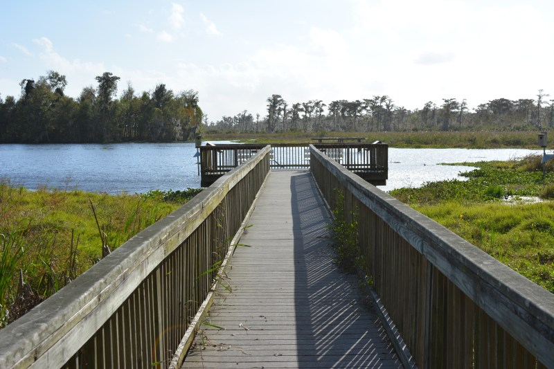 Mandalay Wildlife Refuge Boardwalk