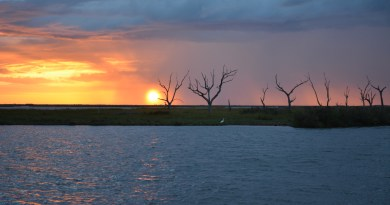 South louisiana amazing salt marsh sunrise.