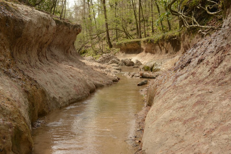 Clark Creek stream, canyon