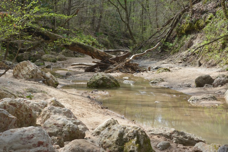 Clark Creek, clear water, Tunica Falls