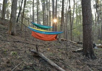 Davy Crockett National Forest Hammock Camping