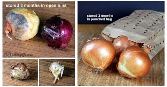 onion garlic