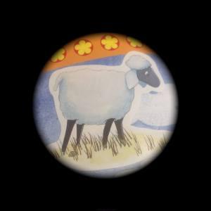 Making lambs