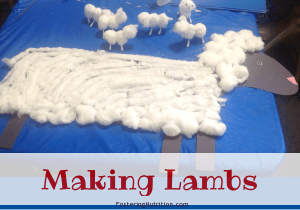 Making Lambs