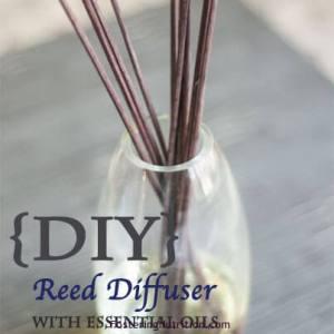 DIY diffuser doTerra