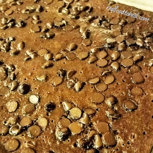 Fudgy Blender Brownies
