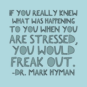 Dr. Hyman Stress | Real Food with Dana