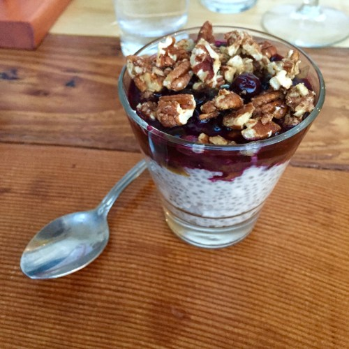 Blueberry Chia Pudding | Blooming Beets Kitchen Review | Real Food with Dana