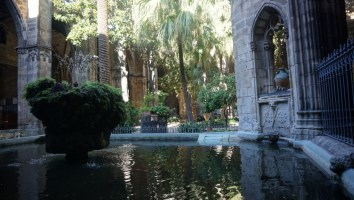 Lovely pond in the cloister