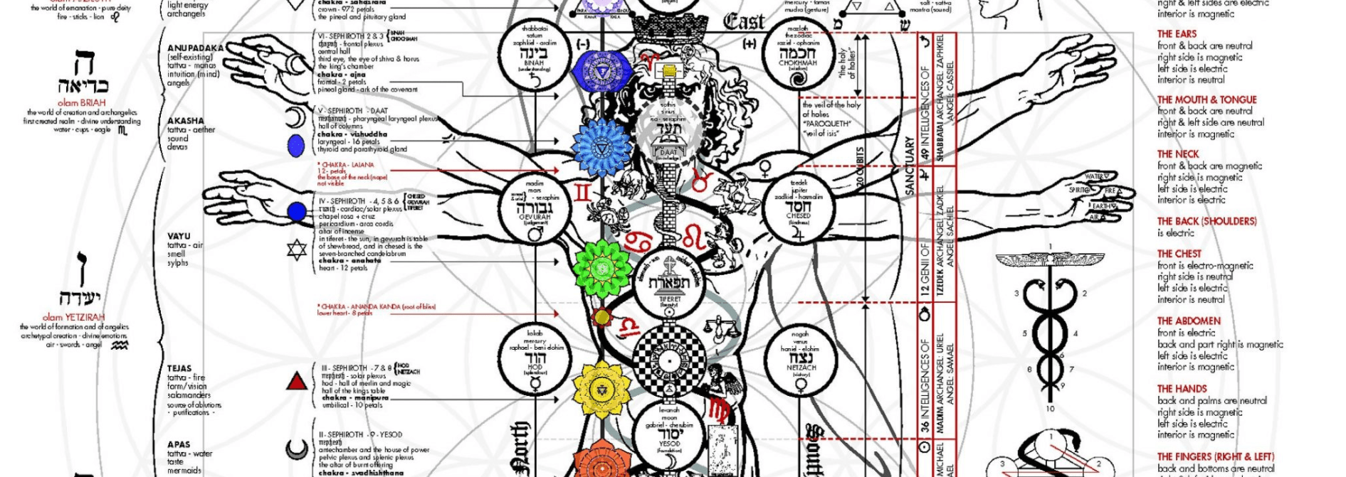 Occult Anatomy of Man Subtle Body Blueprints