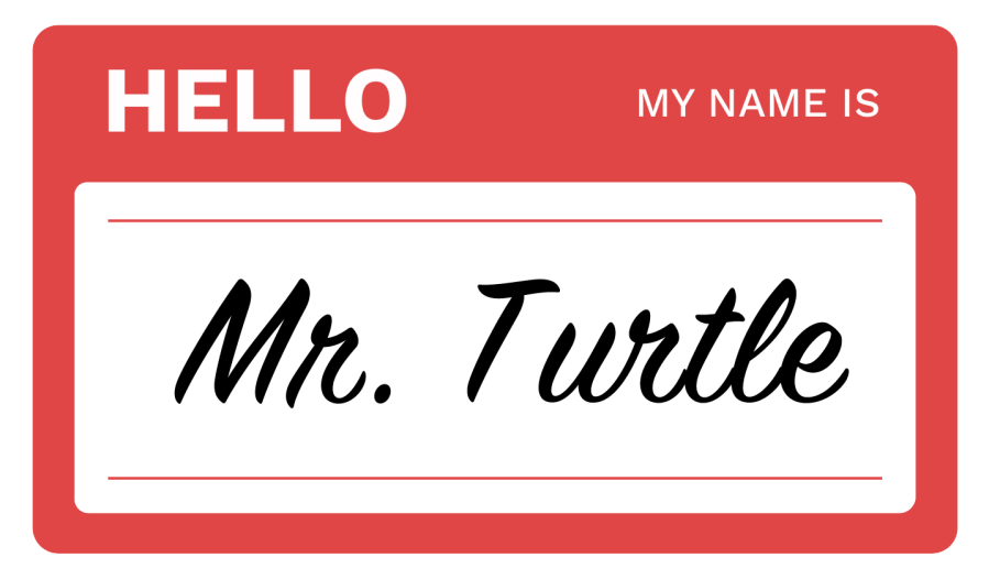 Mr.Turrtle
