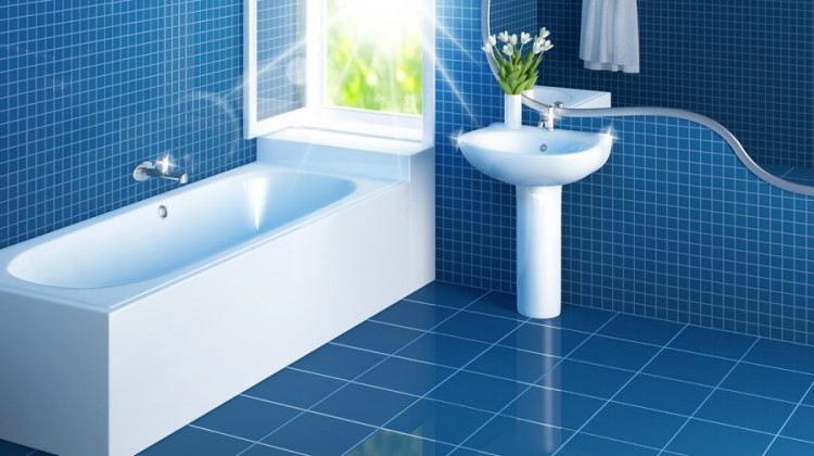 General Bathroom Cleaning Tips Reality Source
