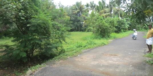 Residential Land for sale at Irinjalakuda