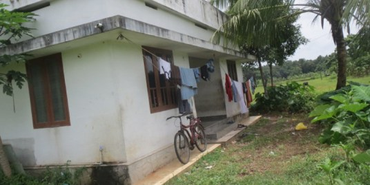Land and House for sale at Near Nedumbassery