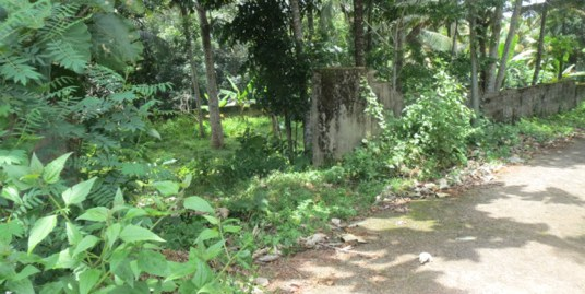 LAND FOR SALE AT KOLLAM