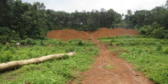 Land for sale at Kodughoor
