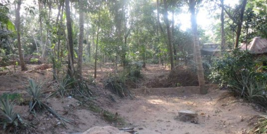 Residential land for sale at Trivandrum